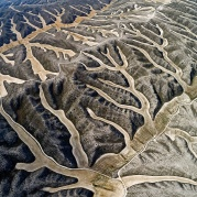 Harvested wheat leaves an abstract pattern reminiscent of antlers spreading through this hilly territory in this desert region, thanks to the outlines of former wetlands in Aragon, Burgo de Ebro, Spain.